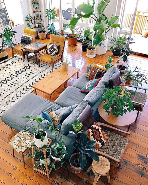 In een vintage interieur staan veel planten, zoals vetplanten en cactussen.